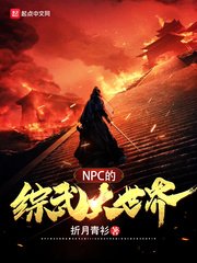 NPC的综武大世界